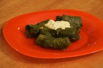 Dolma with grape leaves